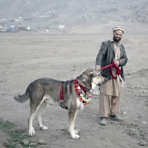 Afghanistan today_0074